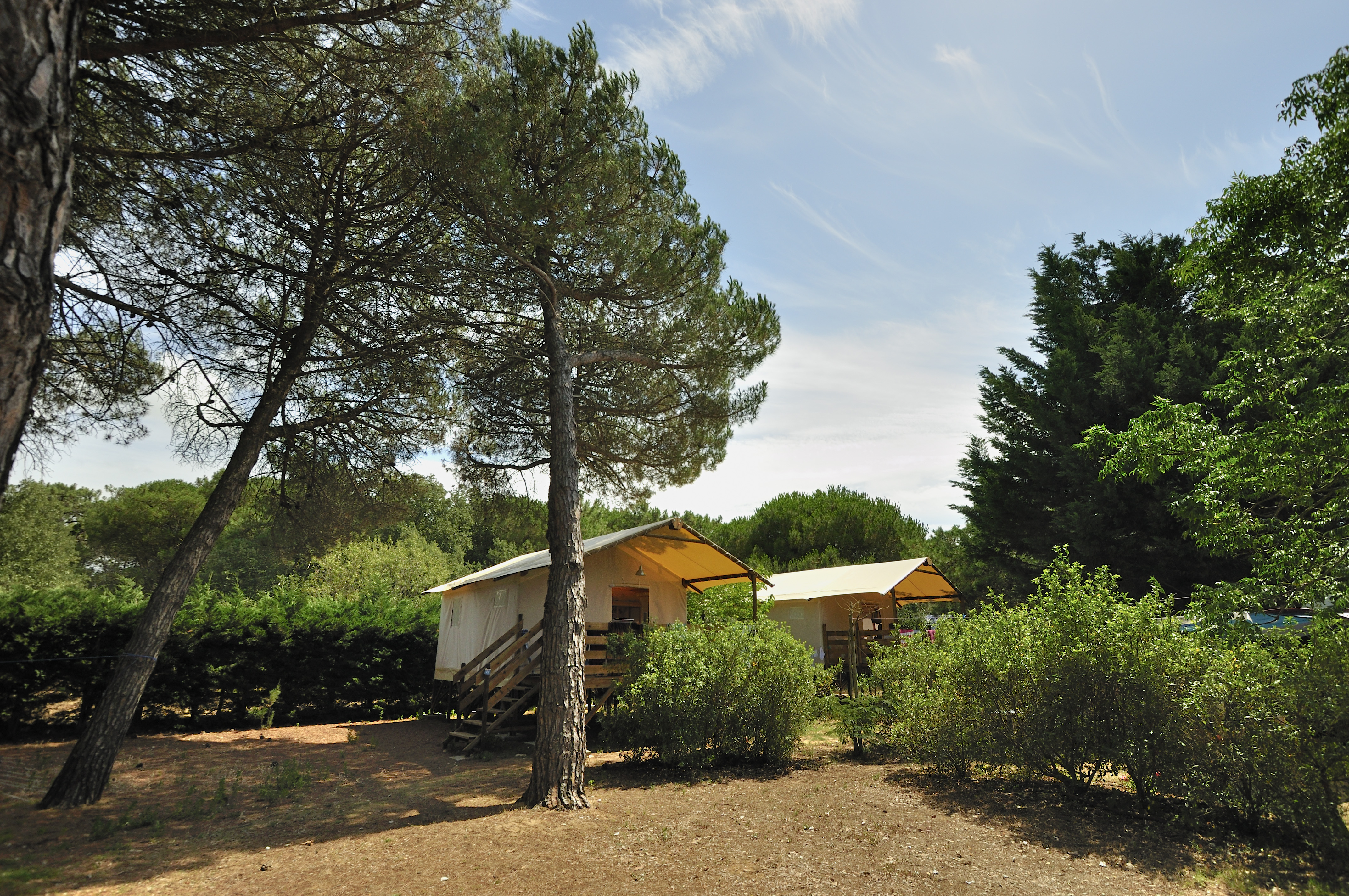 Camping le bel air ile de re atlantique nord france for Camping ile de re avec piscine