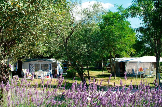 Camping Le Petit Bois Ruoms - Camping Le Petit Bois Camping RUOMS