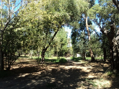 Camping Olmello Plage