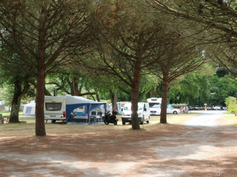 Camping Les 3 Coups