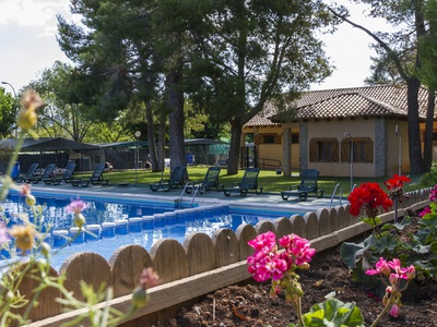 Camping Altomira  - Camping Castellón - Image N°2