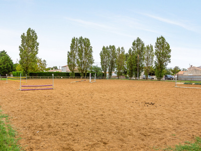 Camping Airotel Oléron  - Camping Charente-Maritime - Image N°15