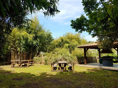 Camping Le Marache - Camping Gironde - Image N°9