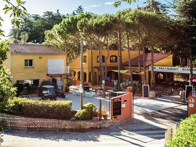 Camping Domaine des Mimosas - Camping Pyrenees-Orientales - Image N°4