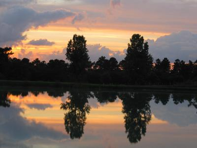 Camping le Chene du lac  - Camping Gironde - Image N°11