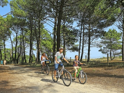 Camping Le Vivier  - Camping Landes - Image N°12