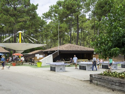 Camping Le Vivier  - Camping Landes - Image N°7