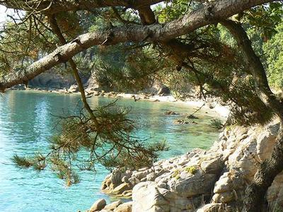 Camping Kerscolper  - Camping Finistere - Image N°10