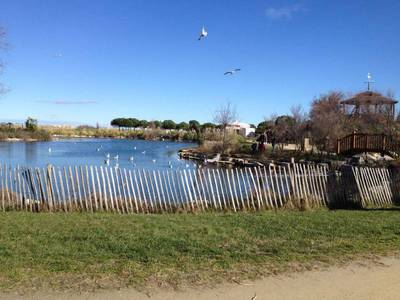 Camping Montpellier Plage - Camping Herault - Image N°12