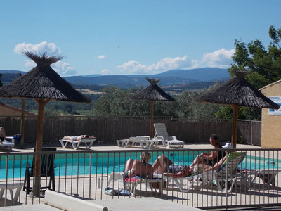 Camping Les Oliviers  - Camping Alpes-de-Haute-Provence - Image N°3