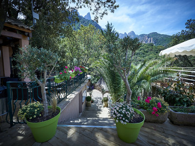 Camping Les Oliviers - Camping Corse - Image N°8