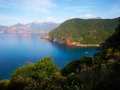 Camping Les Oliviers - Camping Corse - Image N°9