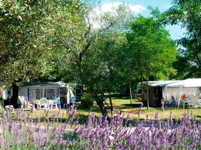 Camping Le Petit Bois - Camping French Time - Camping Ardeche - Image N°10