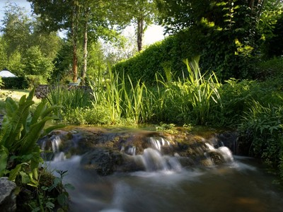 Camping Moulin du Roch - Camping Dordogne - Image N°5