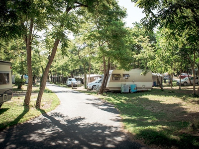Camping Le Suroit - Camping Charente-Maritime - Image N°9