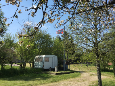 Camping Camp'eco - Camping Haute-Marne - Image N°2