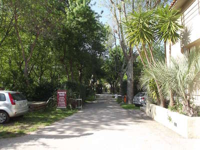 Camping Albizia - Camping Pyrenees-Orientales - Image N°3